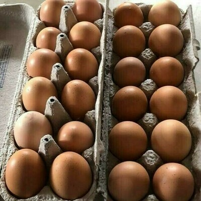 Farm Fresh Brown Eggs Flat of 30  - LOCAL Free Range