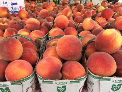 Peaches 3ltr Basket - LOCAL