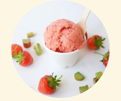 Four All Ice Cream - Roasted Strawberry Rhubarb Sorbet - LOCAL