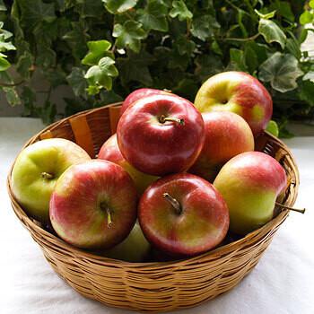 Apple - Paula Red LOCAL - 3lb