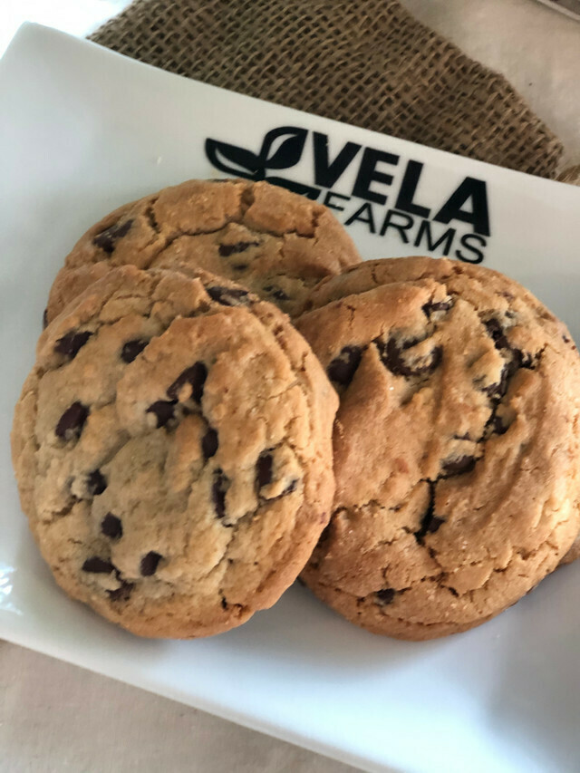 Fresh Chocolate Chip Cookie*