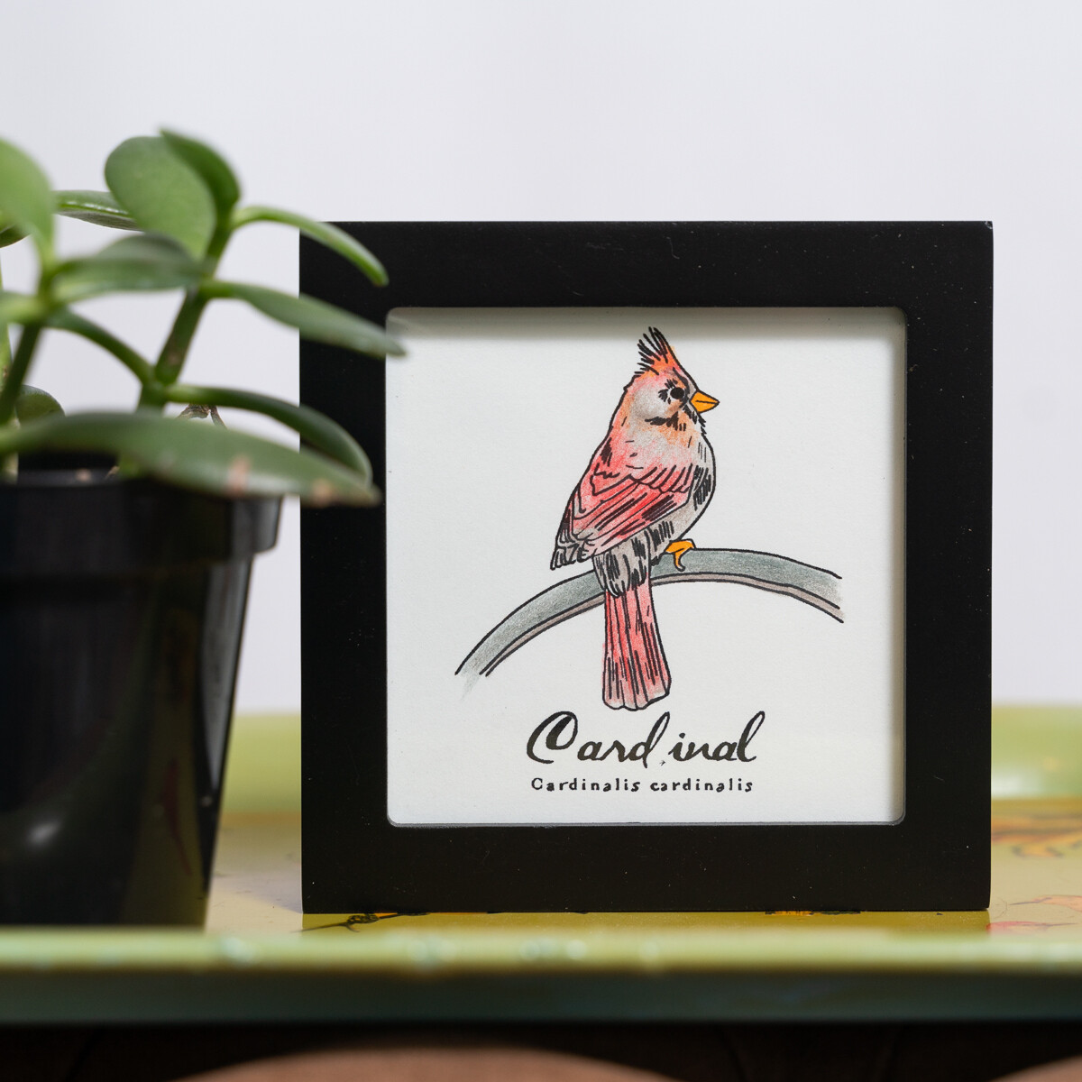 Cardinal Scientific Print