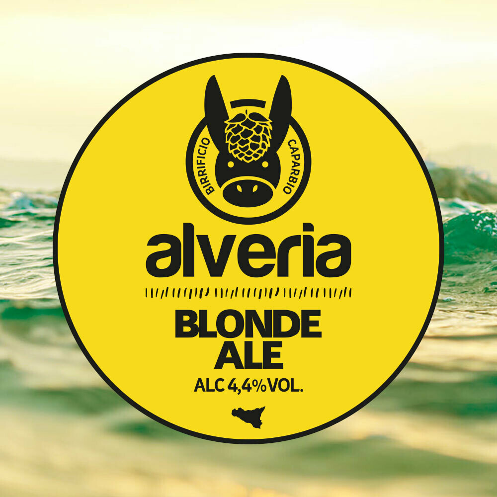 Blonde Ale | Cartone 6 bottiglie