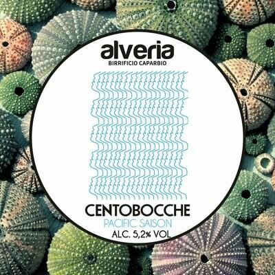 Centobocche Pacific Season | Cartone 6 bottiglie