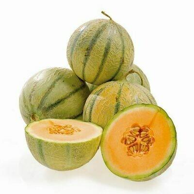 Meloa Cataloupe