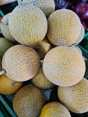 Meloa Gália Algarve - Pequena