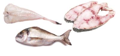 Cabaz de Peixe - Gourmet