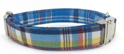 Collier-Laisse Écossais bleu/jaune