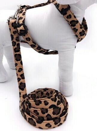 Harnais et laisse léopard