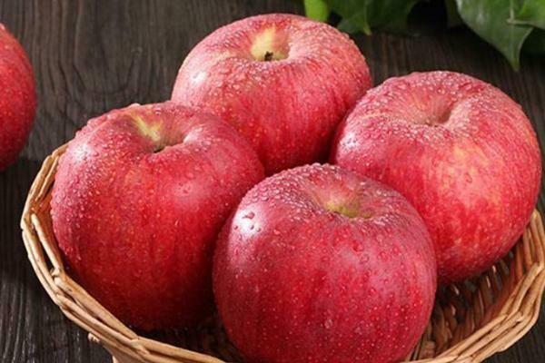 【RBP】Big Fuji Apple 顶级富士苹果3pc ~2lbs