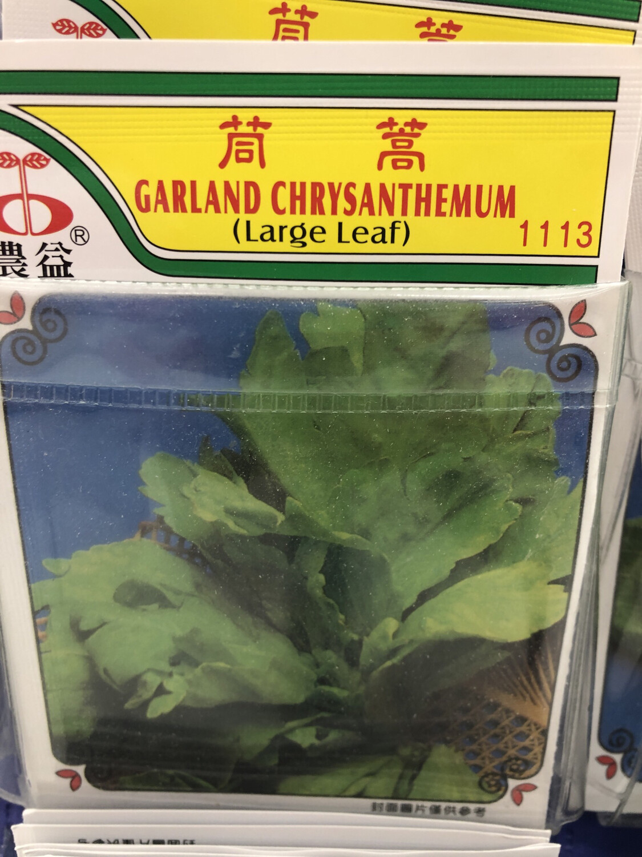 【RBG】Veg. Seeds Garland Chrysanthemum茼蒿种子