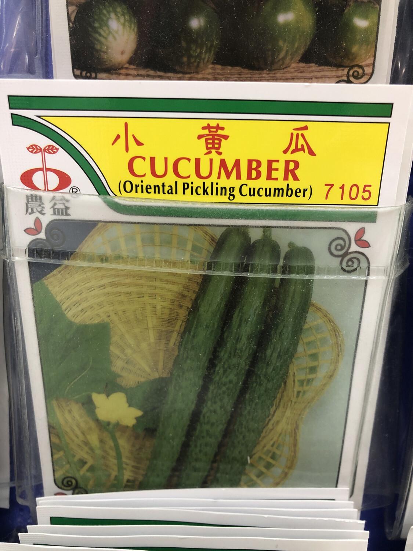 【RBG】Veg. Seeds Cucumber 小黄瓜种子