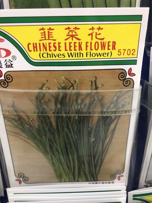【RBG】Veg. Seeds Chinese Leek Flower 韭菜花种子