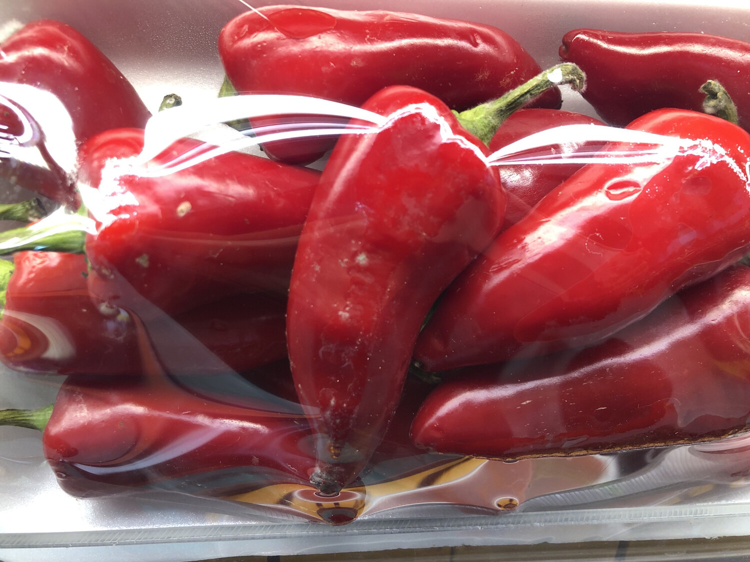 【RBP】Red Pepper 红辣椒 1lb