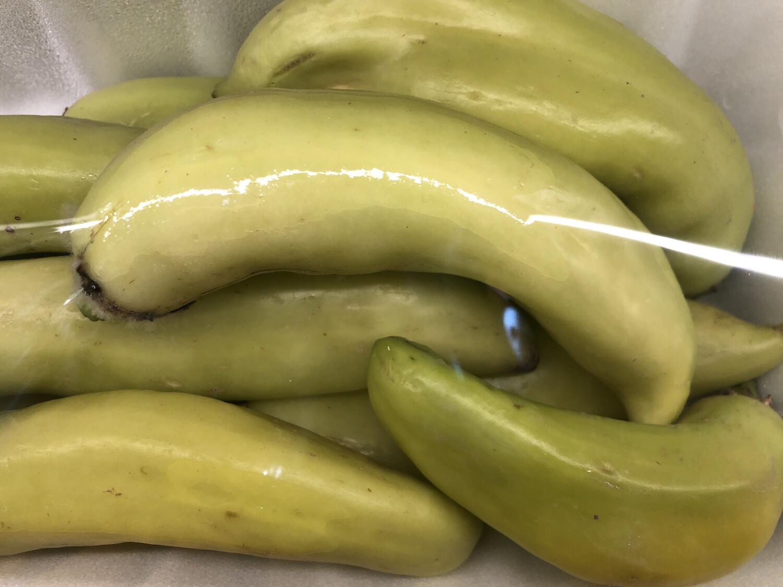 【RBP】Banana Pepper 香蕉椒 1lb