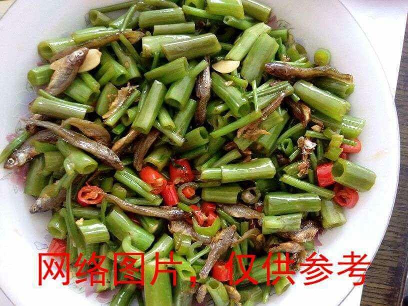 【滋味湖南】Won Choy Stem with Dried Small Fish空心菜梗炒小鱼
