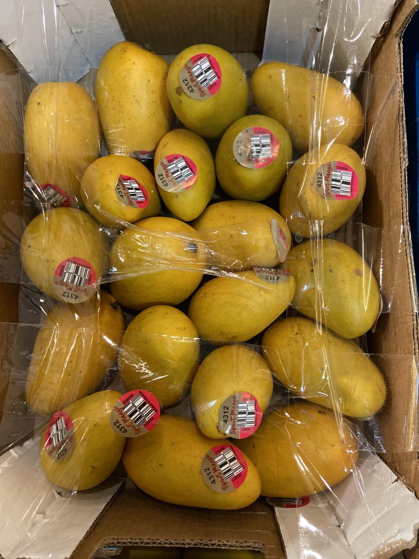【RDP】Yellow Mango 黄芒果 小腰芒 一箱