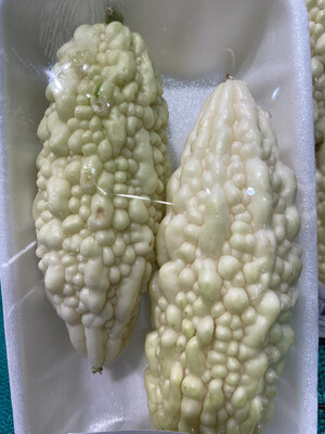【RBP】台湾白玉苦瓜 ~1.2lbs
