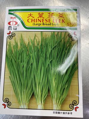 【RBG】Veg. Seeds Chinese Leek 大叶韭菜种子