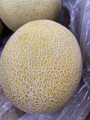 【RSP】Cantaloupe 1EA