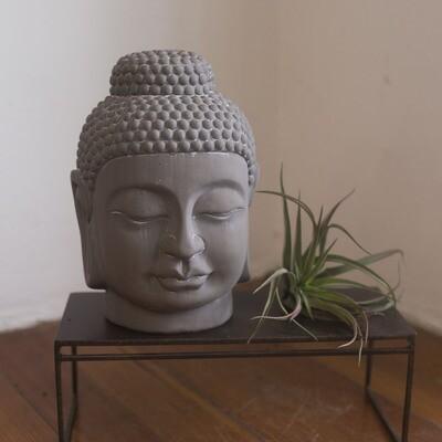 Terra Cotta Buddha Head