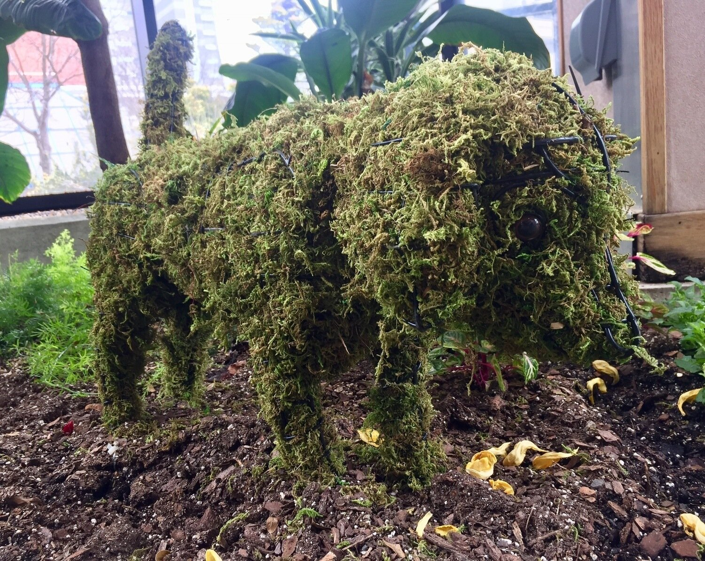 Beagle Topiary