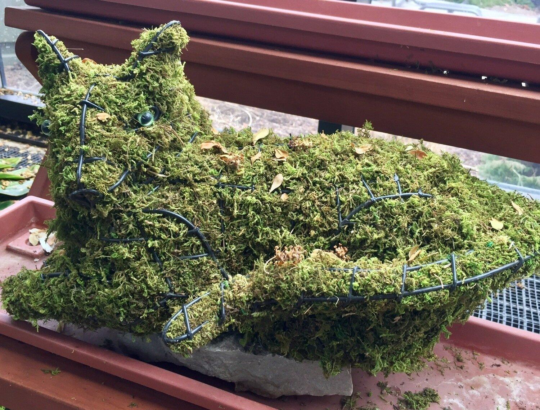 Cat, Lying Topiary