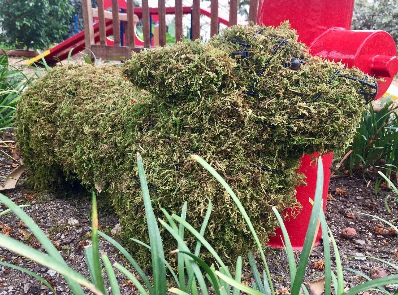 Corgi Topiary