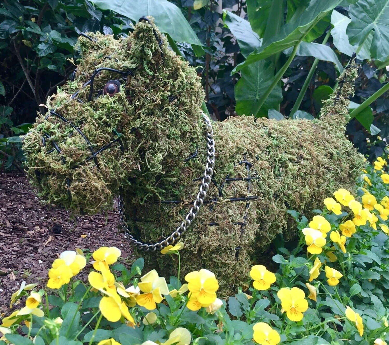 Scottie Topiary