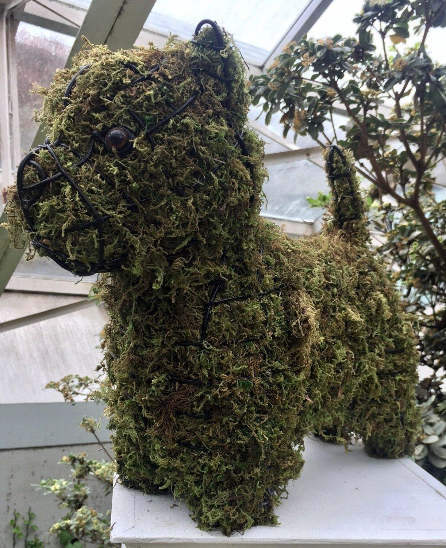 Westie Topiary