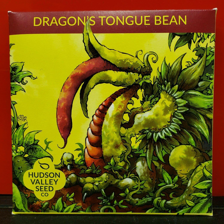 Art Pack Seeds: Bean, Bush (Dragon's Tongue)