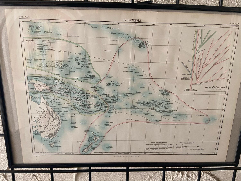 Framed Britannica 9th ed. Polynesia