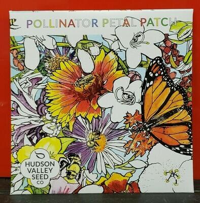 Art Pack Seeds: Flower Mix (Pollinator Petal Patch)