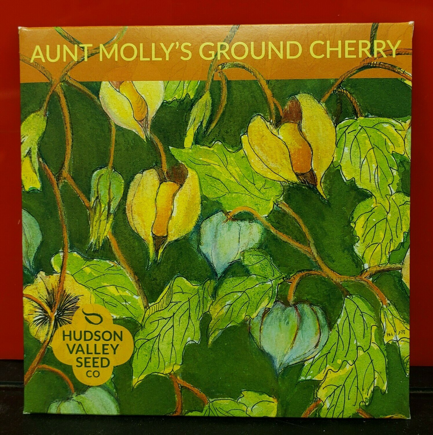 Art Pack Seeds: Ground Cherry 'Aunt Molly's'