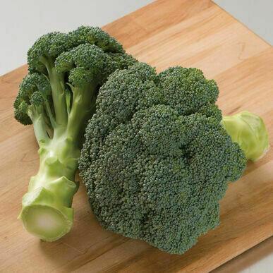 Broccoli, 'Imperial'