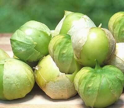 Tomatillo, 'Toma Verde'