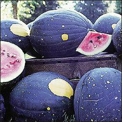 Watermelon, Moon & Stars