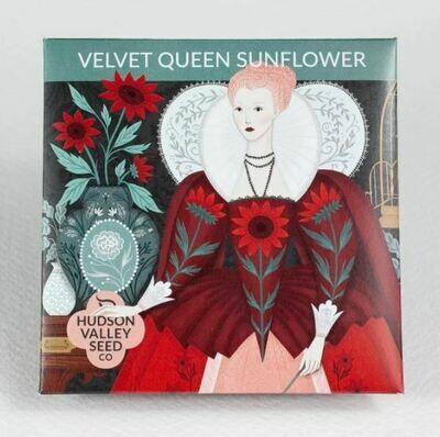 Art Pack Seeds: Sunflower 'Velvet Queen'