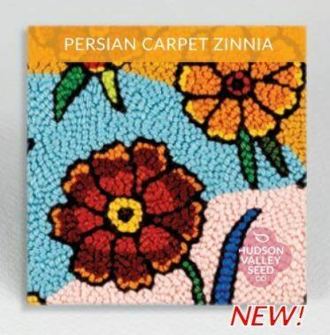 Art Pack Seeds: Zinnia 'Magellan Persian Carpet'