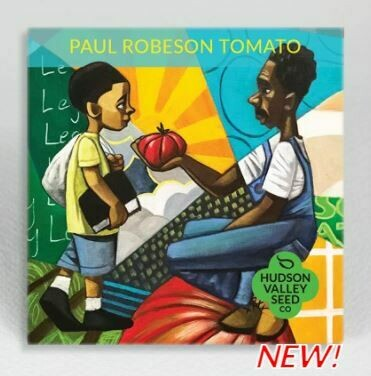 Art Pack Seeds: Tomato 'Paul Robeson'
