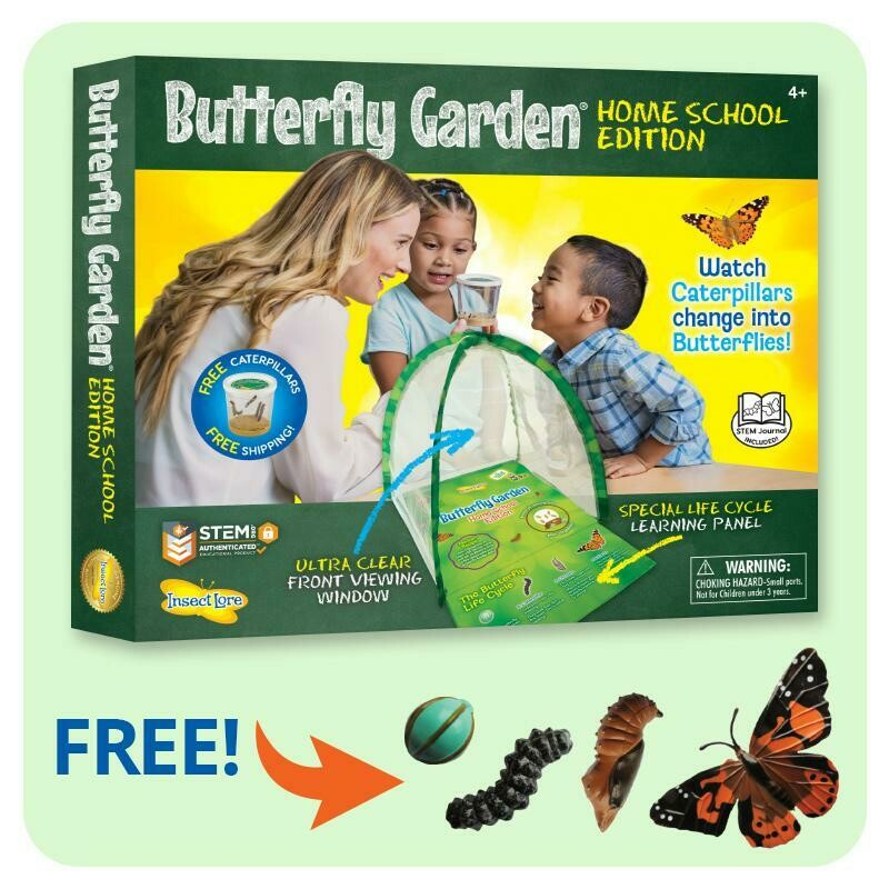 Butterfly Garden - Home School Edition