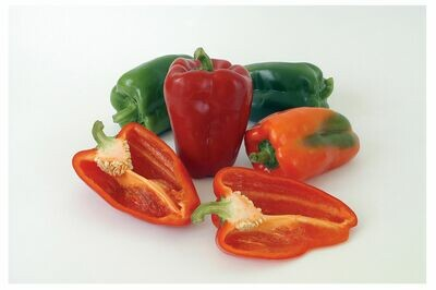 Pepper, Sweet Red Bell, plant