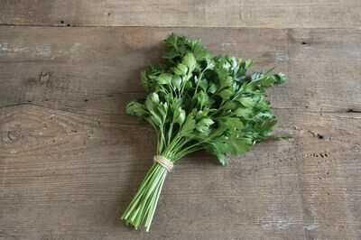 Parsley, 4 pack