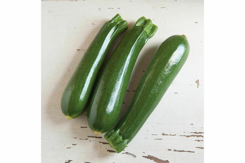Zucchini, plant