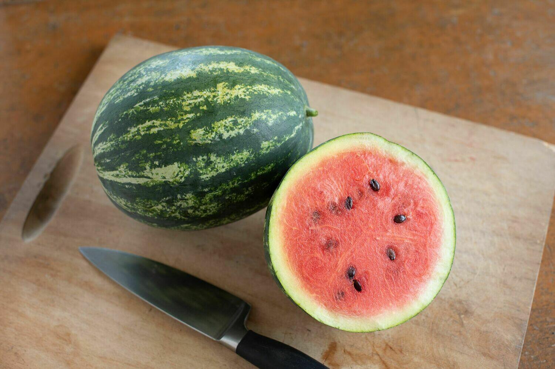 Watermelon, plant