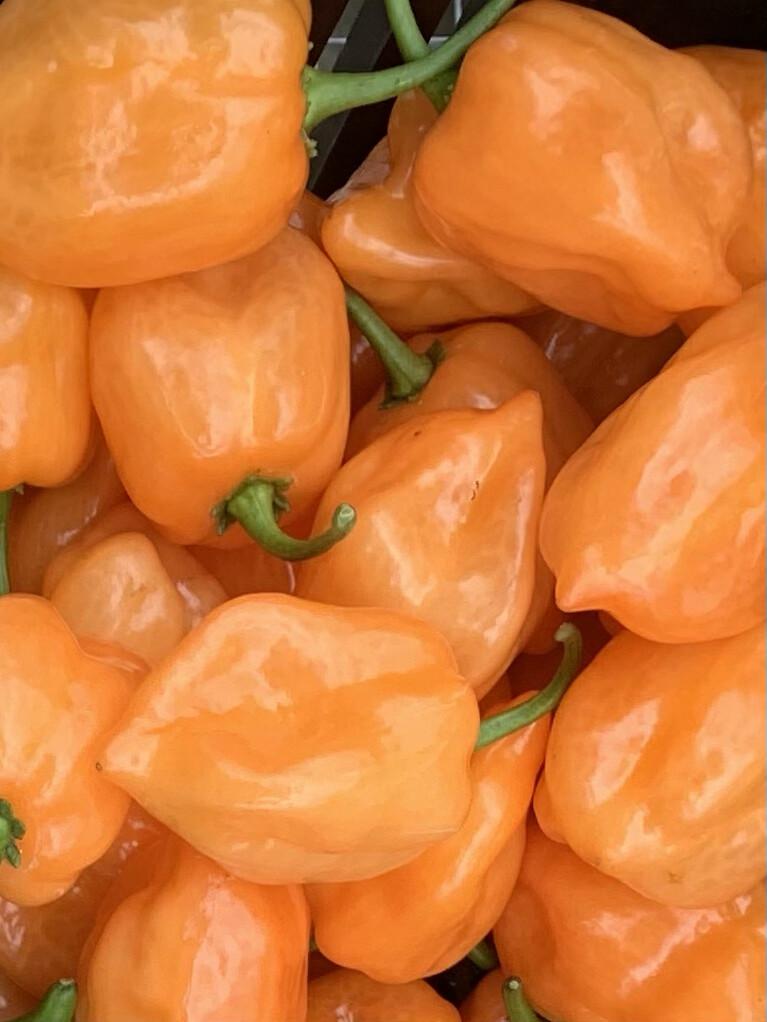 Peppers, Habañero, Quarter Pound