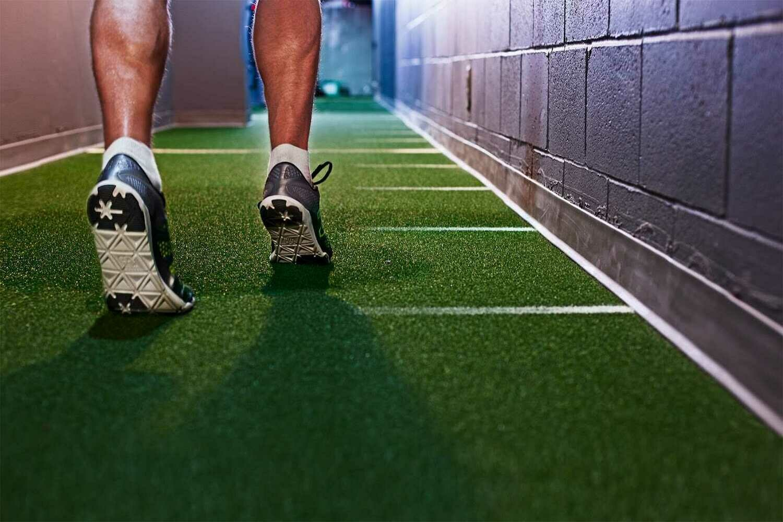 Van Dyck Supreme Gym Grass