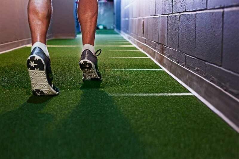 Van Dyck Supreme Artificial Gym Grass