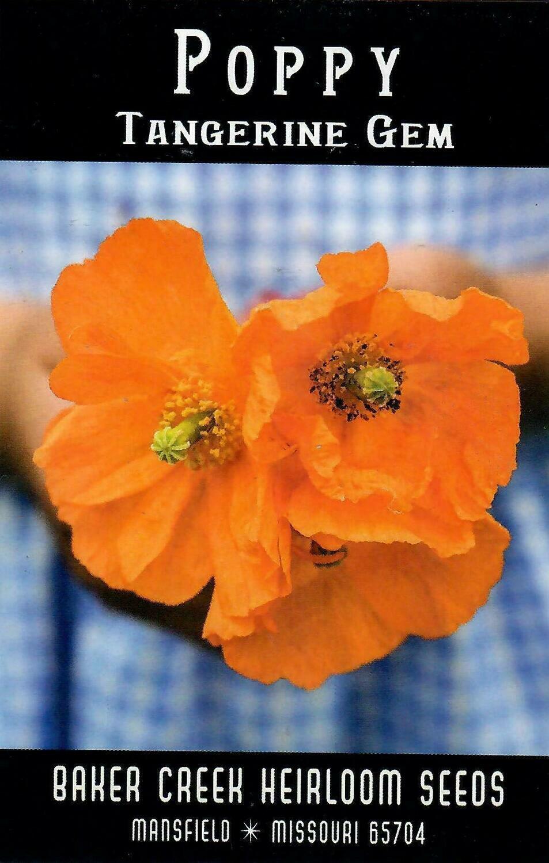 Poppy - Tangerine Gem BC