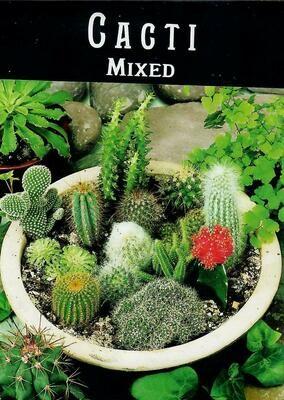 Cacti Mixed Seed